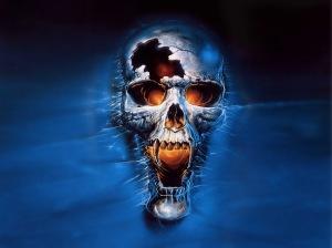 u2_skull